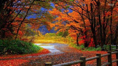 imagenes de paisajes naturales otoño im 193 genes de paisajes y naturaleza para ver