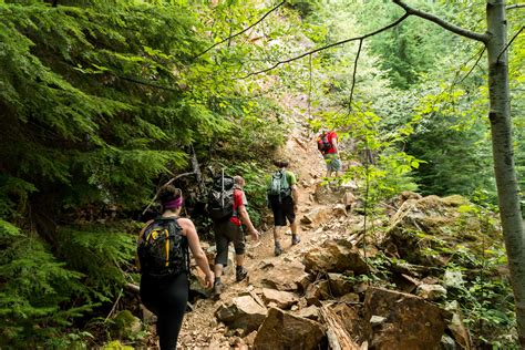 hiking into trail days a adventure on the appalachian trail books hiking the binkert trail to the lions mike heller