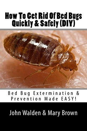how to kill bed bugs fast how to get rid of bed bugs quickly safely diy bed bug