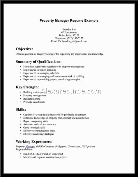 resume summary statement 28 images resume summary