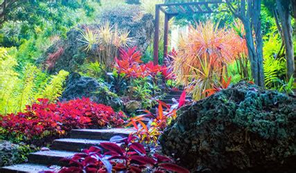 Eastern Caribbean Gardens Travel With A Challenge Andromeda Botanic Gardens