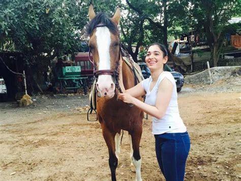 Ah Hoy Ride A Pony Theitlistscom 2 by ப க பல க ள ம க ஸ ப ஜ வ ட நண ப ன ட ஆன ர தமன ன