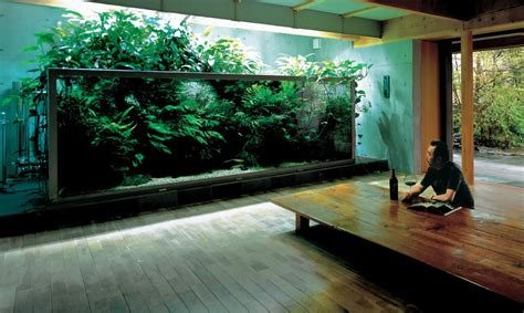 aquarium design japan aquarium zen