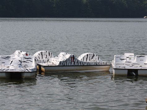 paddle boats west orange picnic area paddle boating latest addition to south