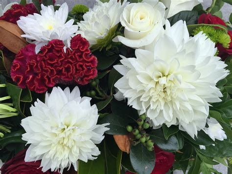 flower design newcastle flower of the month dahlias jardines newcastle floral