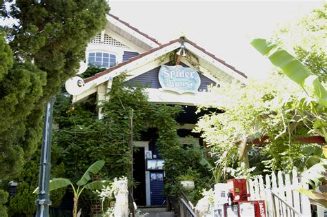 spider house austin the 10 coolest cafes and teahouses in austin texas