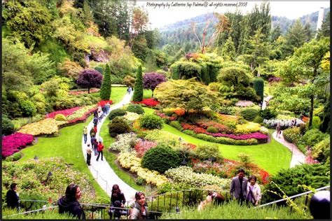 Butchard Gardens by 10 Beautiful Gardens You Must Visit Yachc New Info
