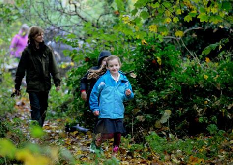 pupils  residents transform woodland  community