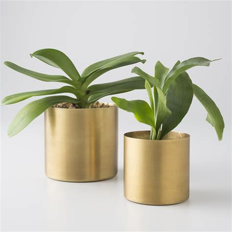 Electric Planter by Schoolhouse Electric Brass Planter Copy Cat Chic