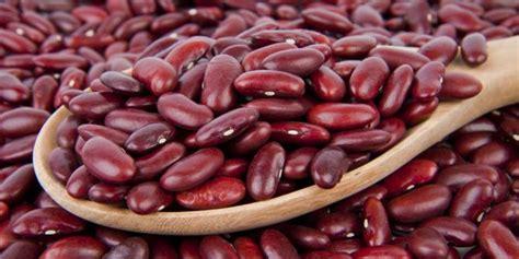 khasiat menakjubkan  kacang merah merdekacom