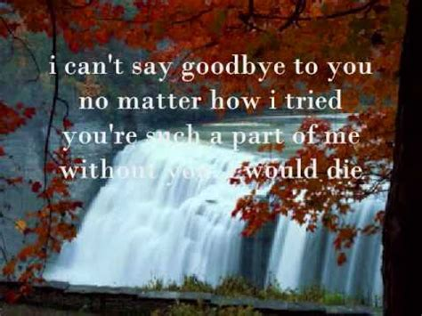 Is It When You Cant Say Goodbye by I Can T Say Goodbye To You By Helen Reddy With Lyrics