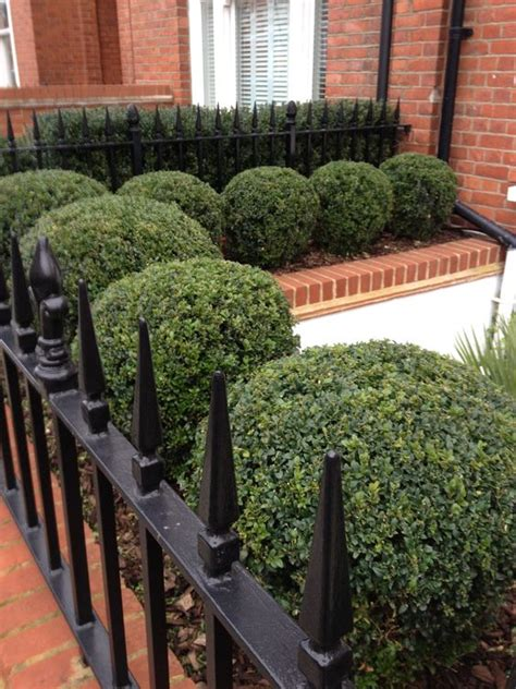 Terraced House Front Garden Ideas Gardens Hedges And Raised Beds On