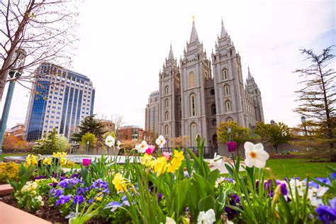 what to do at temple square during every season temple