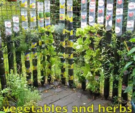 Recycled Plastic Bottles Awesome Vertical Vegetable Garden How To Grow A Vertical Vegetable Garden