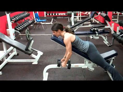 reverse incline bench reverse flys on incline bench images