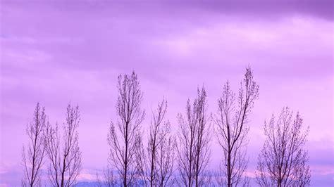 sky wallpaper hd tumblr purple backgrounds hd wallpaper cave