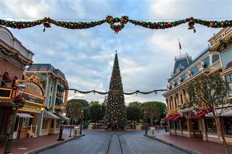 what is the main holiday decoration in most mexican homes 6 tips to decorate your home like disneyland this holiday