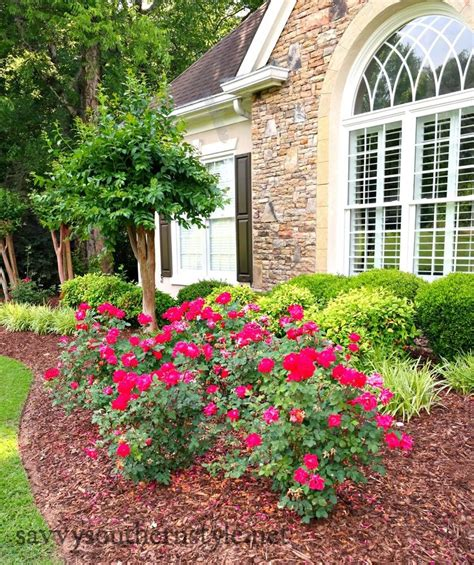 What Did Most Rich Southern Planters Do With Their Wealth by 25 Best Ideas About Southern Landscaping On