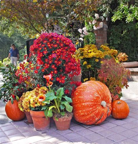 fall landscaping ideas fall landscaping tips home design