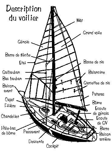 catamaran definition en francais partie d un voilier