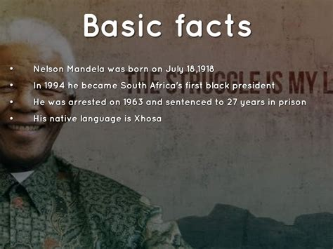 nelson mandela biography quick facts nelson mandela 71 by jakob