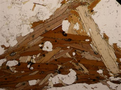 biotite thin section file muscovite and biotite2a jpg wikimedia commons