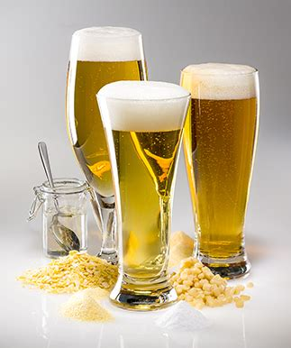 house beer brewing with corn brew your own