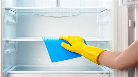 clean cleaner how often you should clean your refrigerator and the