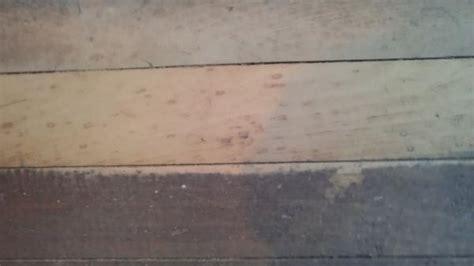 laminate flooring laminate flooring restoring