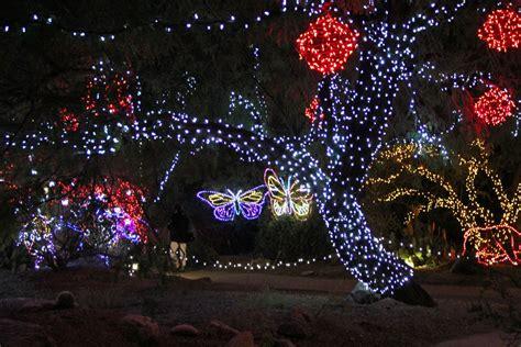 zoo lights in az zoolights display at the zoo