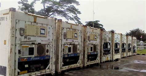 cold storage reefer container
