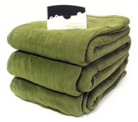 Where To Buy Heated Blankets by Buy Biddeford Plush Fleece Heated Electric Blanket At
