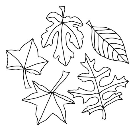 fall leaves coloring pages autumn leaves coloring pages az coloring pages