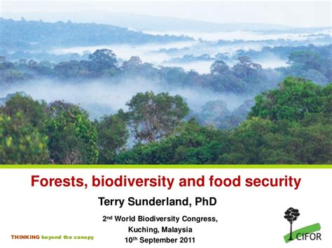 Doctorate In Security by Forests Biodiversity And Food Security