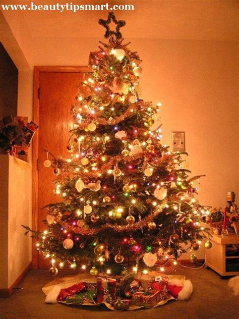 stunning decorated christmas tree images pictures photos