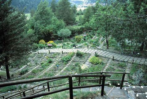 giardino botanico 7 orti botanici per rigenerarsi e conoscere il mondo