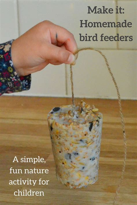 25 best ideas about homemade bird feeders on pinterest