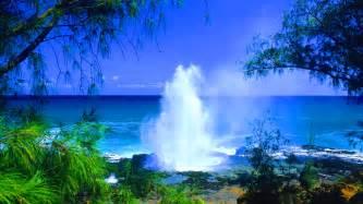 Beach kauai hawaii wallpapers pictures photos images