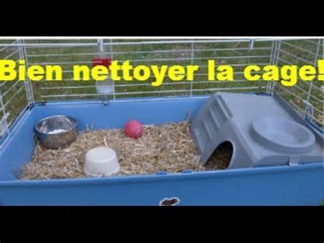 Comment Bien Nettoyer La by Comment Bien Nettoyer La Cage De Rongeur Refaire