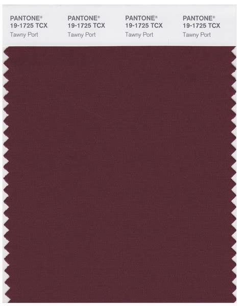 port color pantone smart 19 1725 tcx color swatch card port