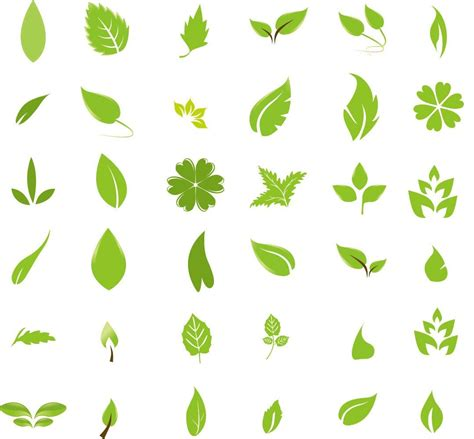 layout vector free free graphic design green leaf design elements free