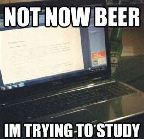 Funny Study Memes - not now beer funny pictures