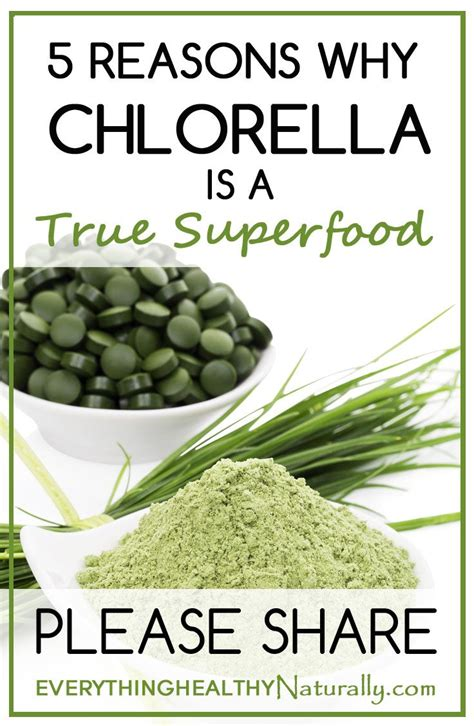 Chlorella For Mold Detox by 71 Best A P O T H E C A R Y Images On