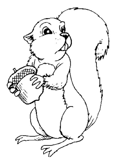 cute squirrel coloring pages squirrel coloring pages for kids az coloring pages