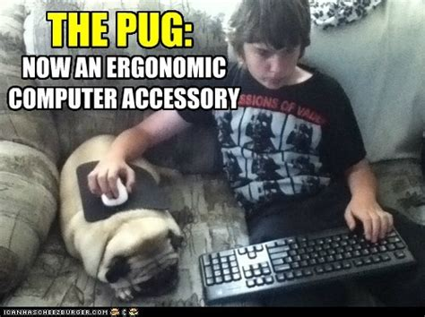 Dog On Computer Meme - my favorite computer themed lolcats crooked glasses