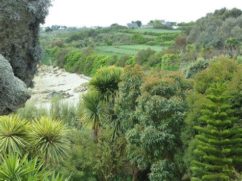 le jardin de roscoff plantes de rochers les