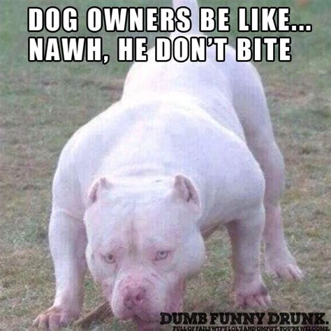 Dog Owner Meme - dog owner be like dumbfunnydrunk com