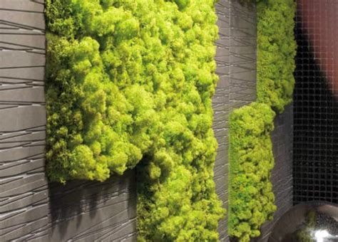 Vertical Moss Garden Create An Interior Vertical Garden With Moss Tiles