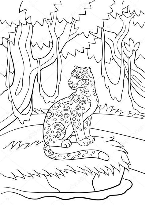 imágenes de jaguar para colorear dibujos para colorear lindo jaguar manchado en el bosque