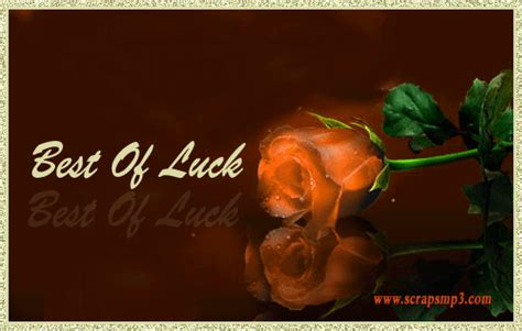 bet of luck best of luck gifs good luck scraps